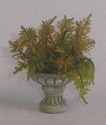 Urn With Ferns